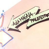 Newton_aula_magna_palestra