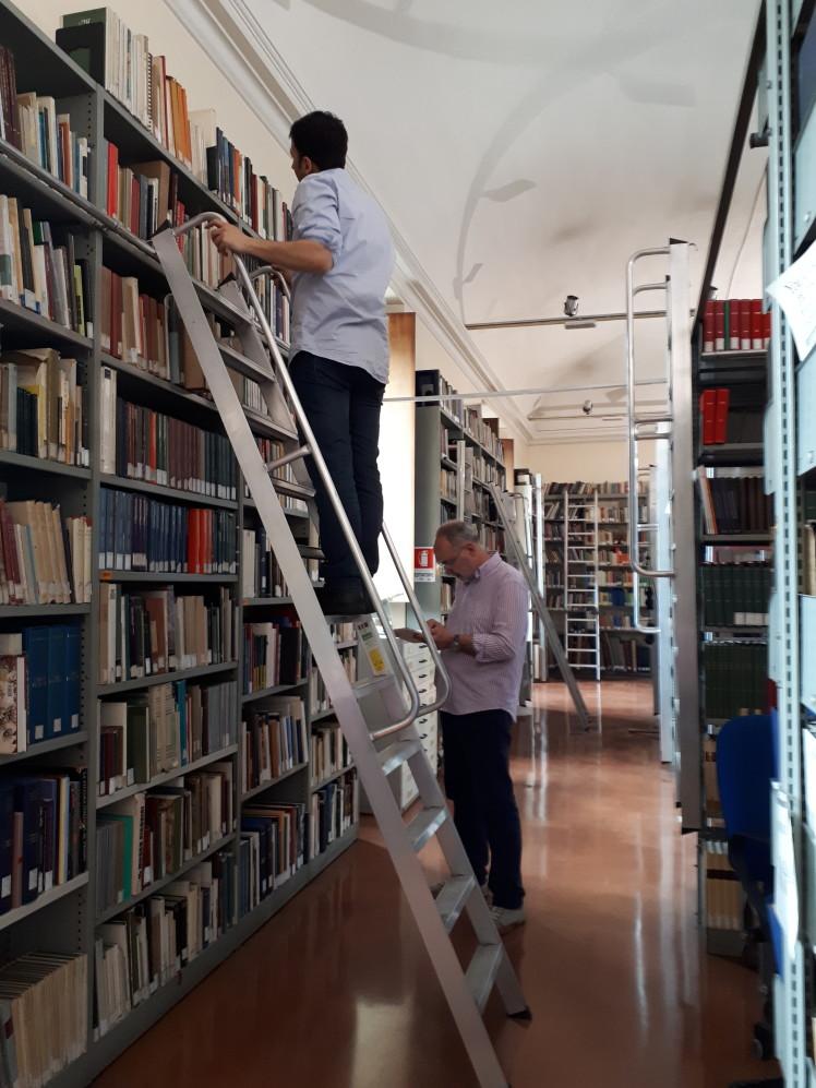 Chi dice che il lavoro in biblioteca sia sedentario?
